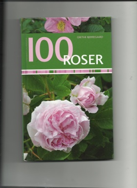 100 roser