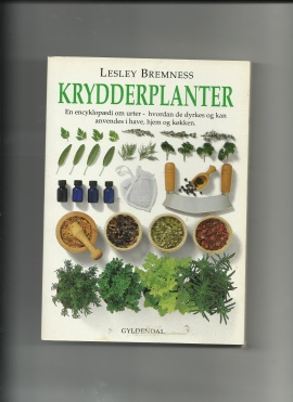 Krydderplanter